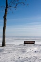 """Bench and Frozen Lake"" by Paul Abou-Nader"