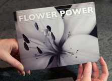 Flower Power 1650 Gallery
