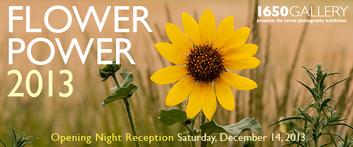 Flower Power 2013 Photography Exhibition