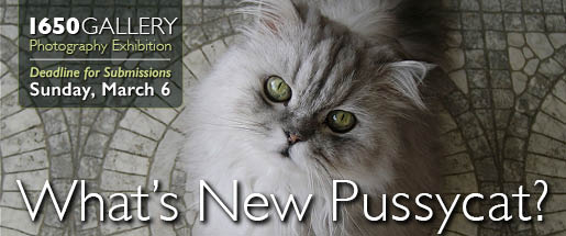 Pussycat Photography 2016 Photography Exhibition
