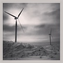 """Windmill Farm #nd"" by Caitlin Abrams"