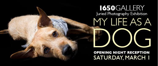 My Life as a Dog 2014 Photography Exhibition